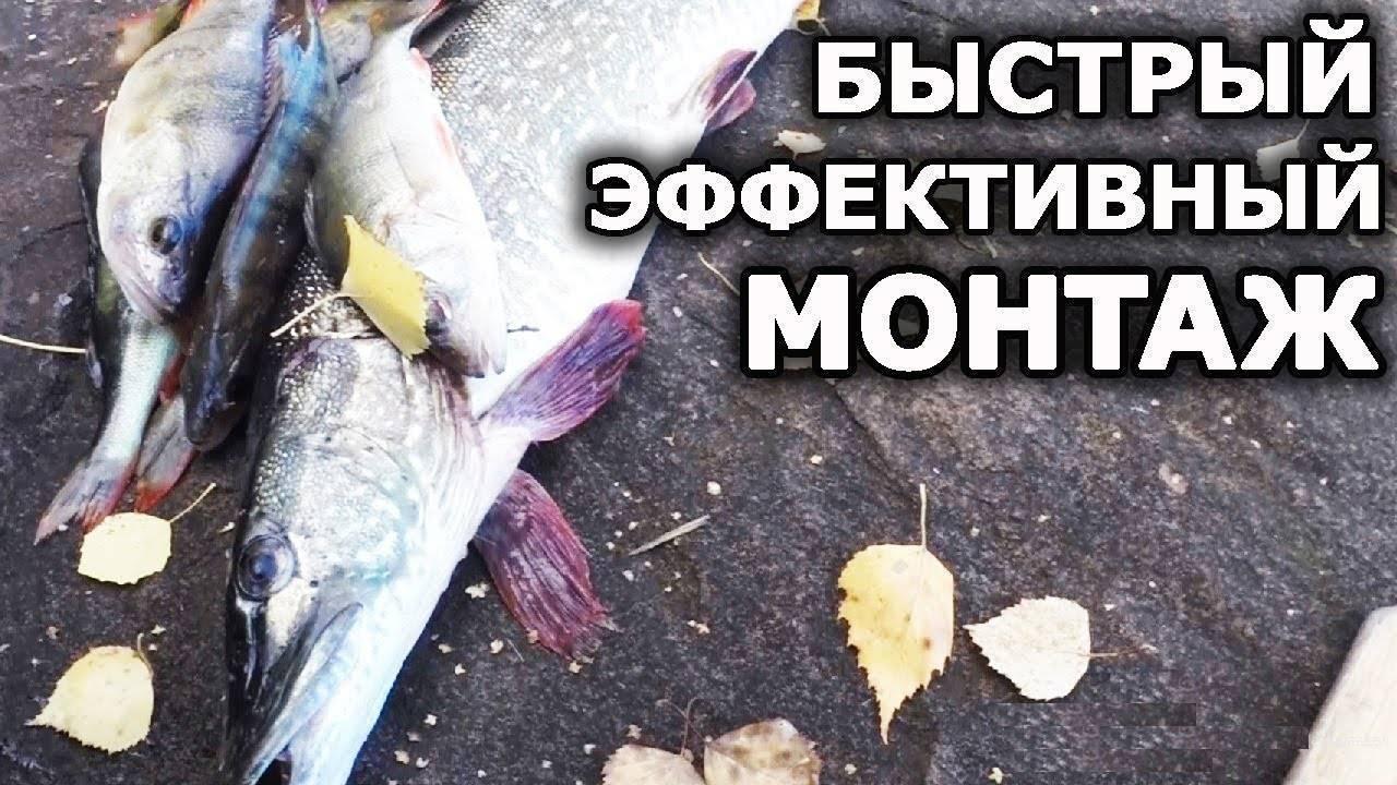 Карта рыболовных мест россии для платной и беслпатной рыбалки!