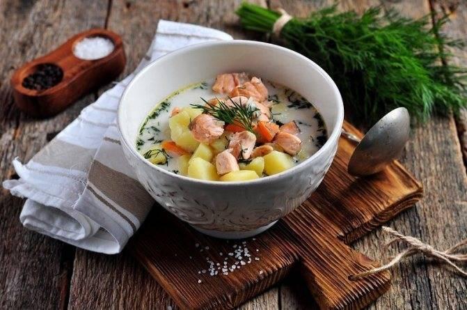 Уха по-фински со сливками. рецепт классический из лосося, форели, семги с фото пошагово