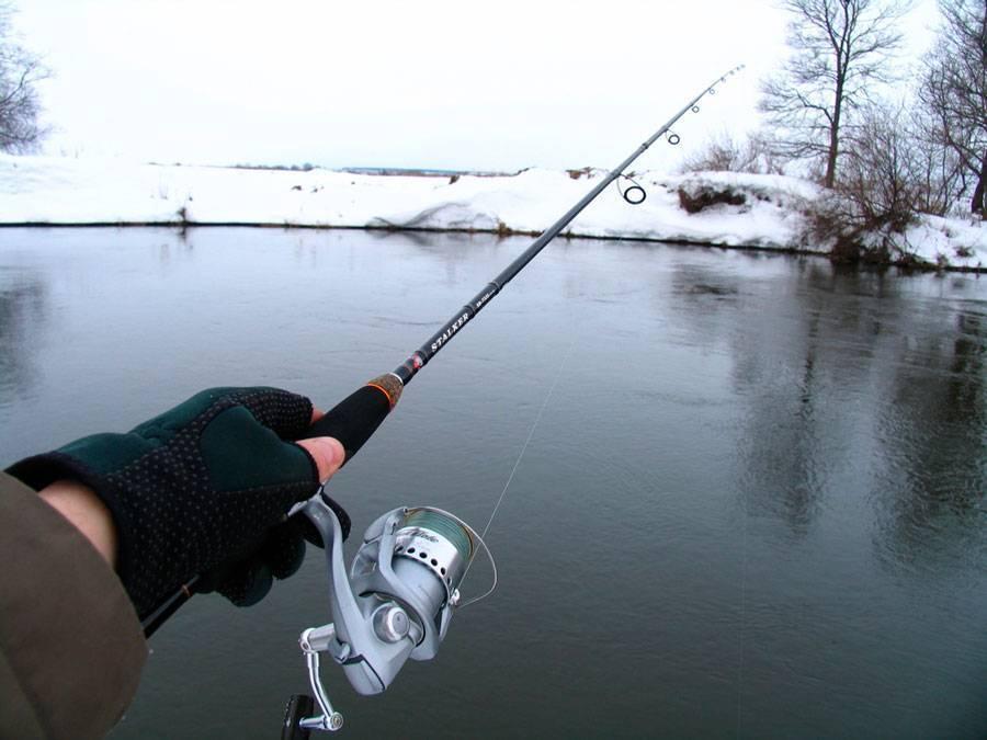 Топ-9 лучших бюджетных спиннингов для рыбалки