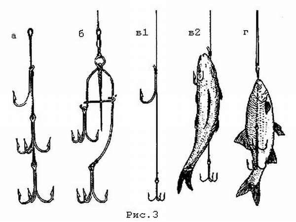 Как насаживать живца на жерлицу правильно и какой способ насадки лучше на рыбалке зимой и летом — одевать крючок через жабры или цеплять его с другими хитростями?