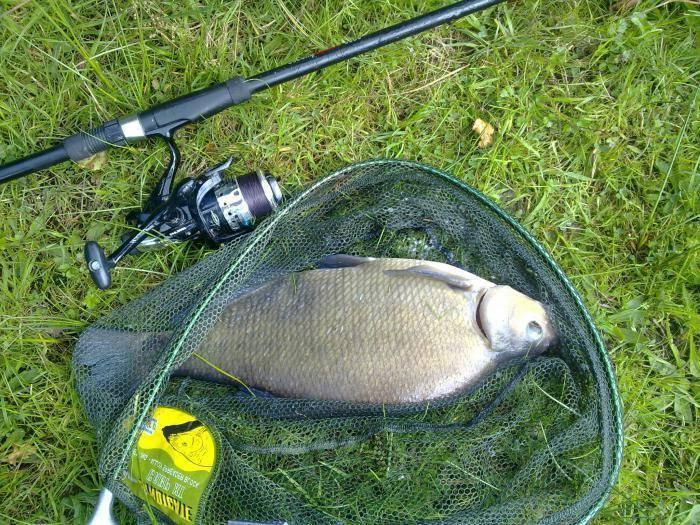 Особенности ловли на фидер весной и подготовка к рыбалке особенности ловли на фидер весной и подготовка к рыбалке