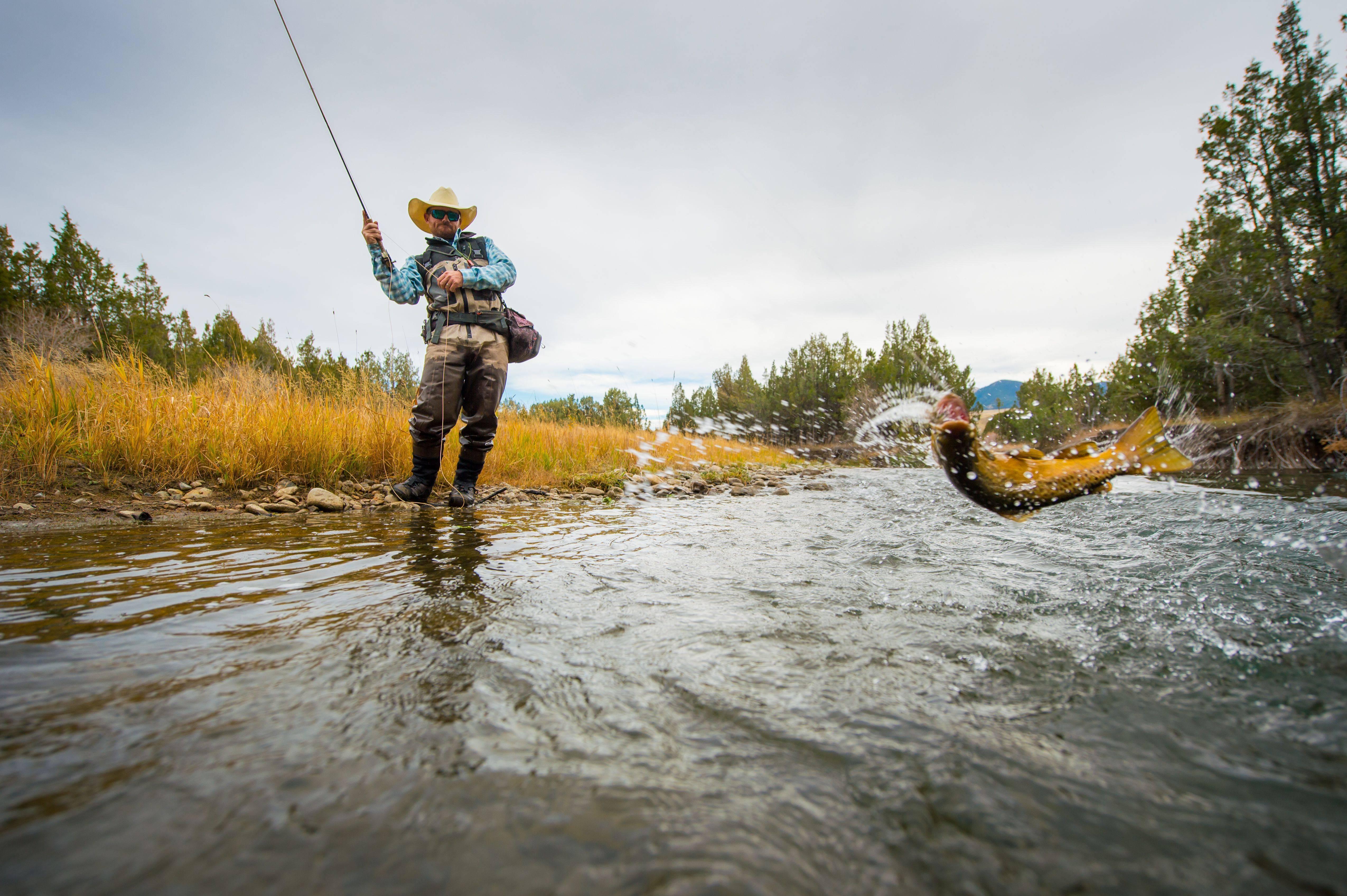 Как ловить голавля нахлыстом?