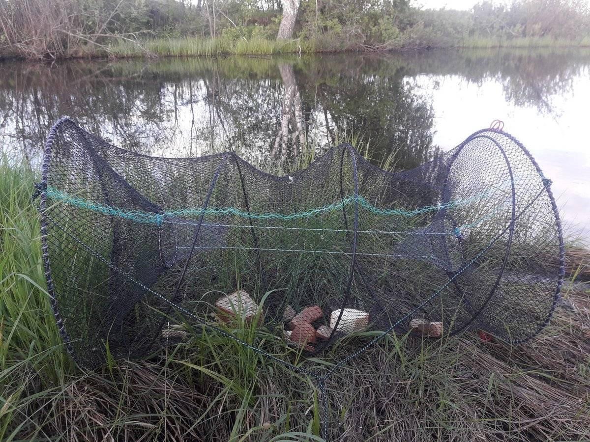 Верша рыболовная своими руками, советы про ловлю на вершу