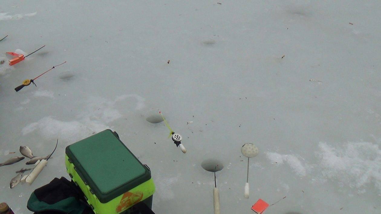 Ловля карася зимой: выбор снастей и техника ловли