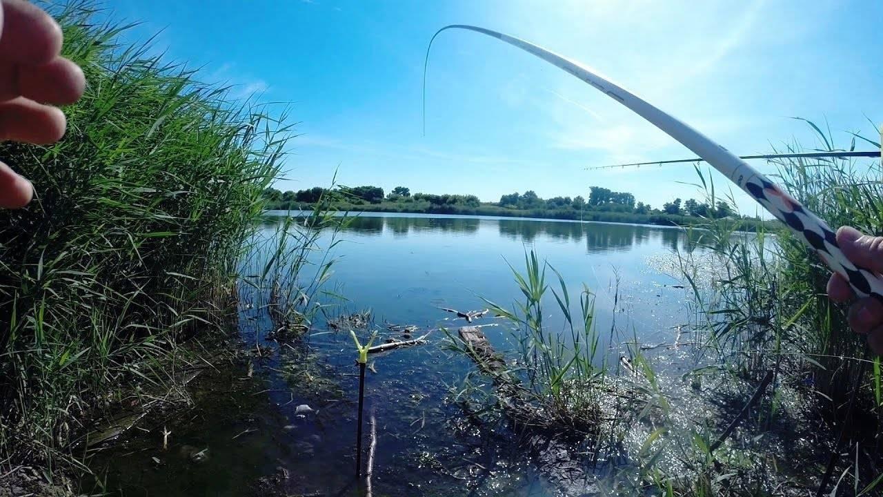 Рыбалка в нижнем новгороде и нижегородской области - список мест