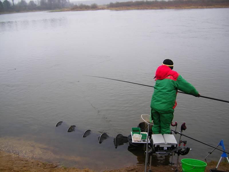 Ловля усача - читайте на сatcher.fish