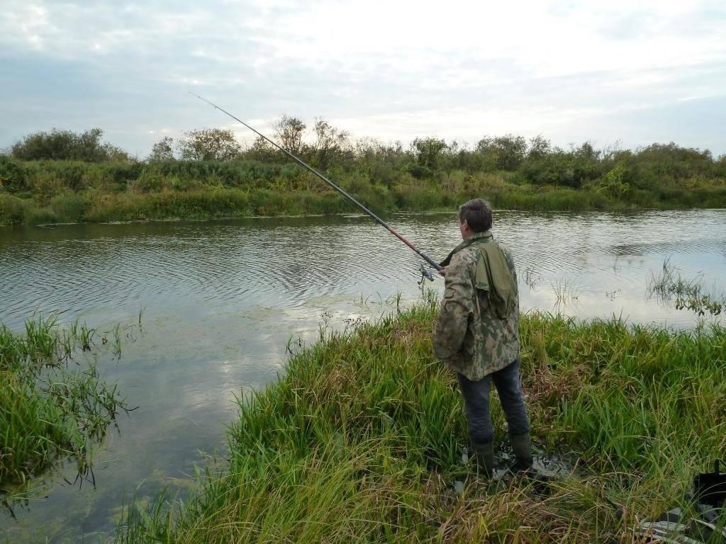 Ловля плотвы летом на поплавочную удочку: на малых реках, озерах, с берега и лодки