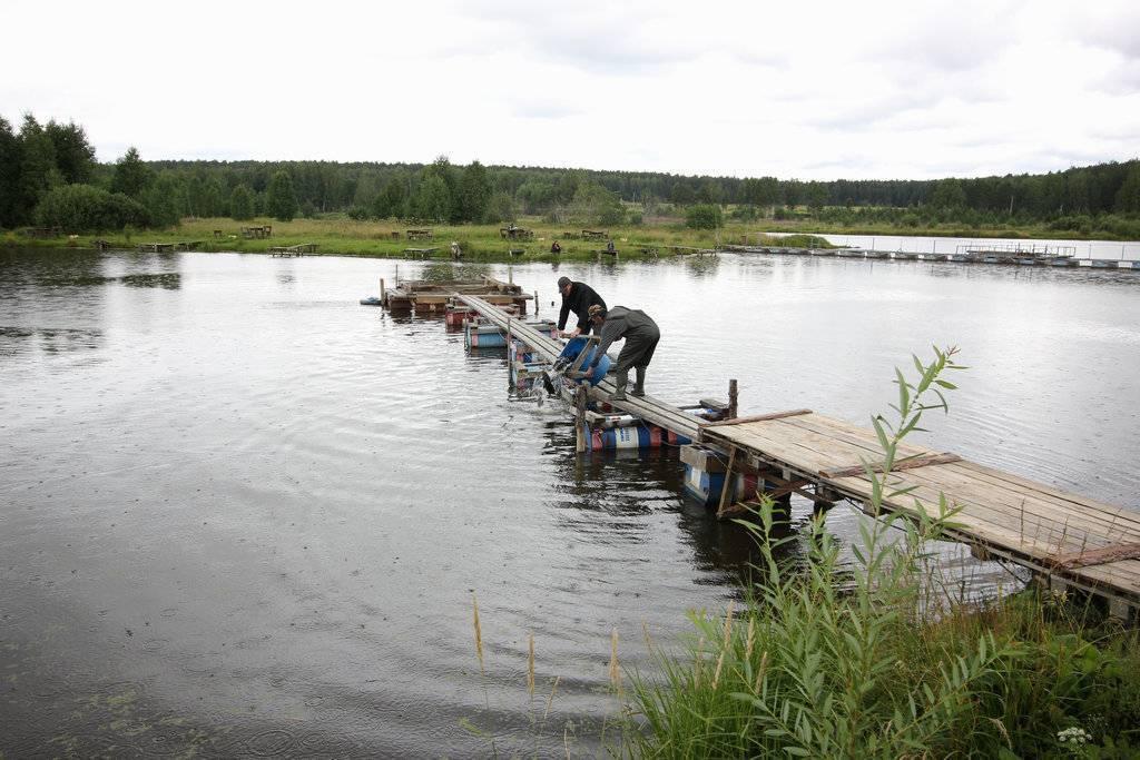 Озера алтая для отдыха и рыбалки