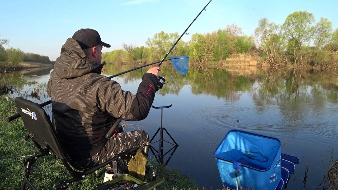Ловля леща – рыбалка зимой, весной, летом и осенью + видео и фото