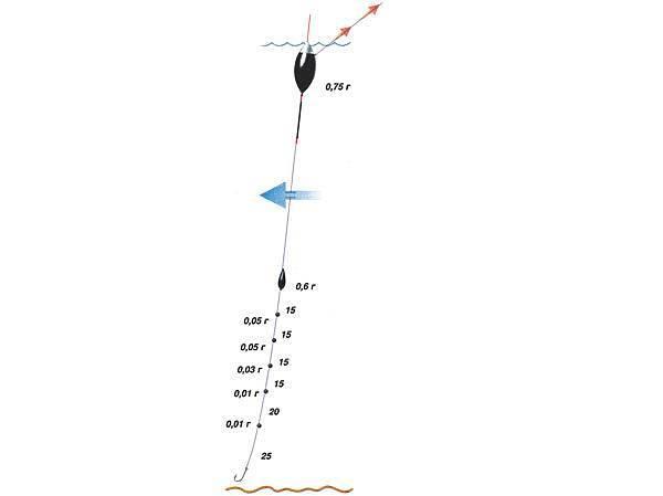 Ловля плотвы на поплавочную удочку: правильная снасть и оснастка удочки для клева плотвы