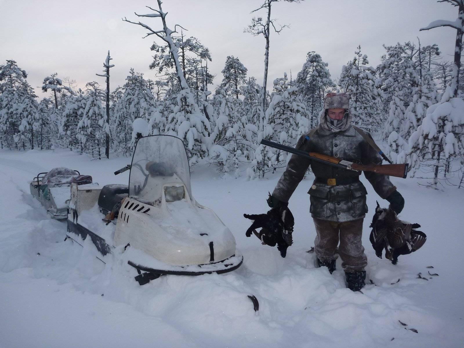 Календарь охотника 2020 года - сроки охоты и виды добычи
