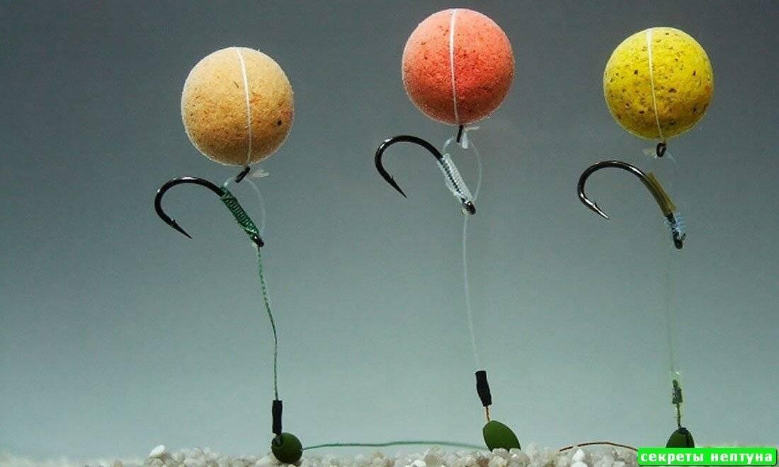 Эффективная ловля карпа и сазана на бойлы летом и осенью