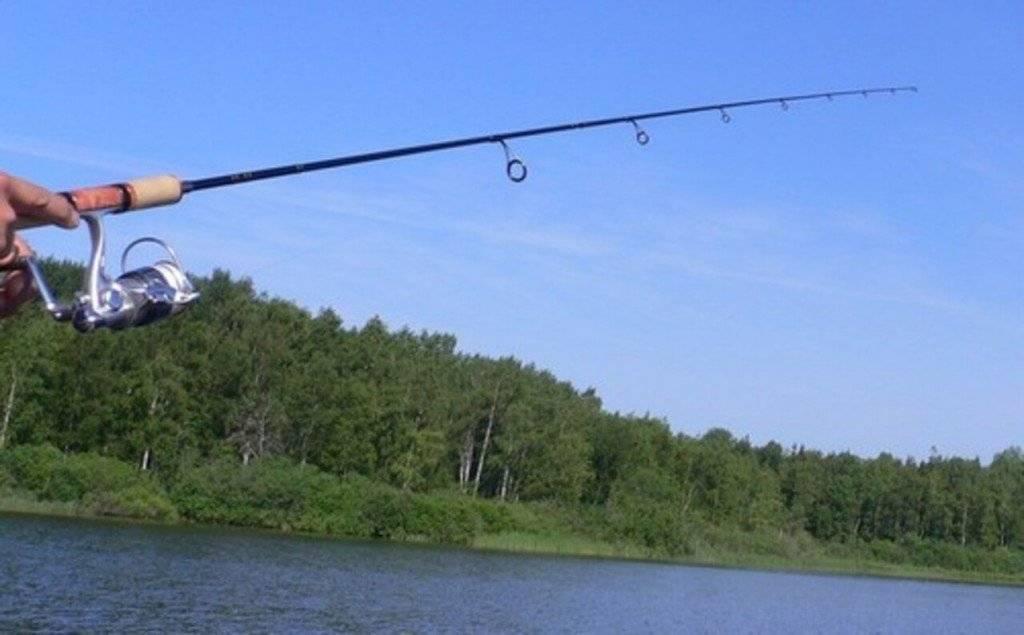 Ловля рыбы на спиннинг. Как ловить на спиннинг