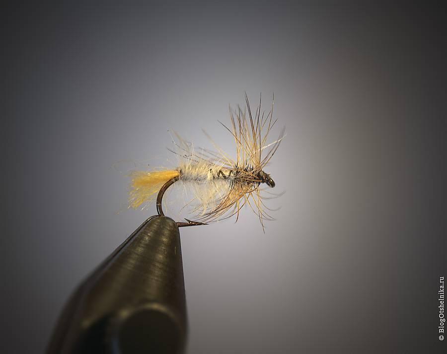 Рыбалка спиннингом на мушку: виды, описание мушек, выбор снастей и техника ловли