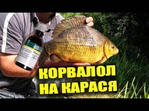 Аттрактанты для рыбалки: обзор лучших и как сделать своими руками