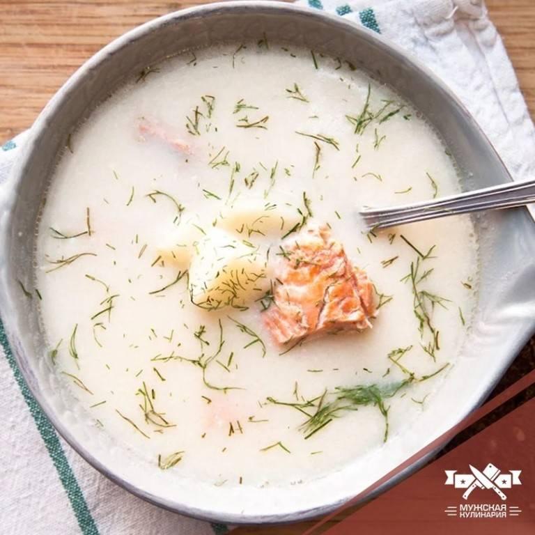 Сливочный суп для холодных дней – кулинарный рецепт