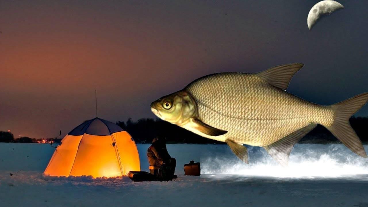 Ночная ловля леща на фидер – рыбалке.нет
