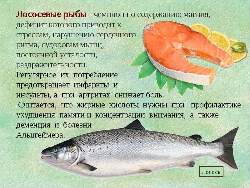 Полезные свойства горбуши: состав, калорийность и влияние на организм (115 фото)