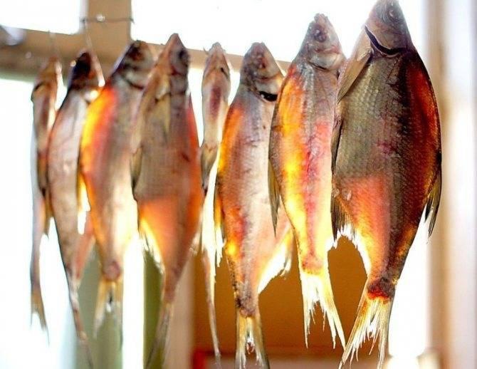 Как солить и сушить рыбу: простые правила и рецепты