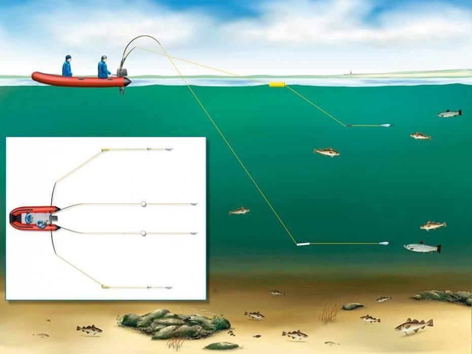 Ловля на дорожку воблер блесну хищных рыб окуня щуки с лодки