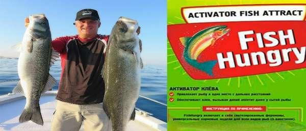 Активатор клева fishhungry - описание и отзывы