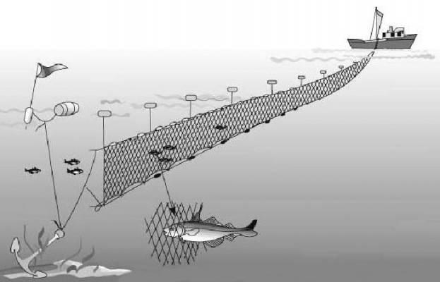 Рыболовная дорожка на резинке. как ловить на дорожку и подготовиться к рыбалке данным способом