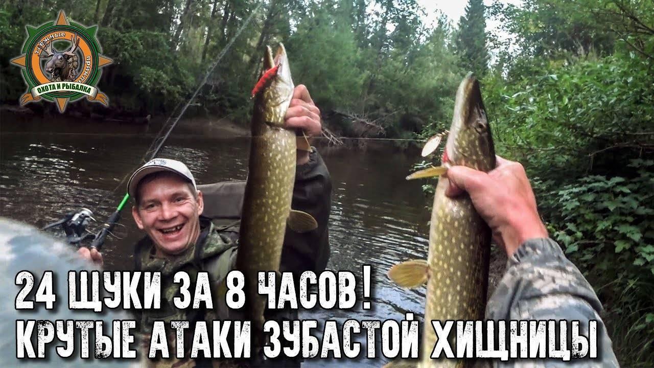 Реклама на сайте ProRybu.ru