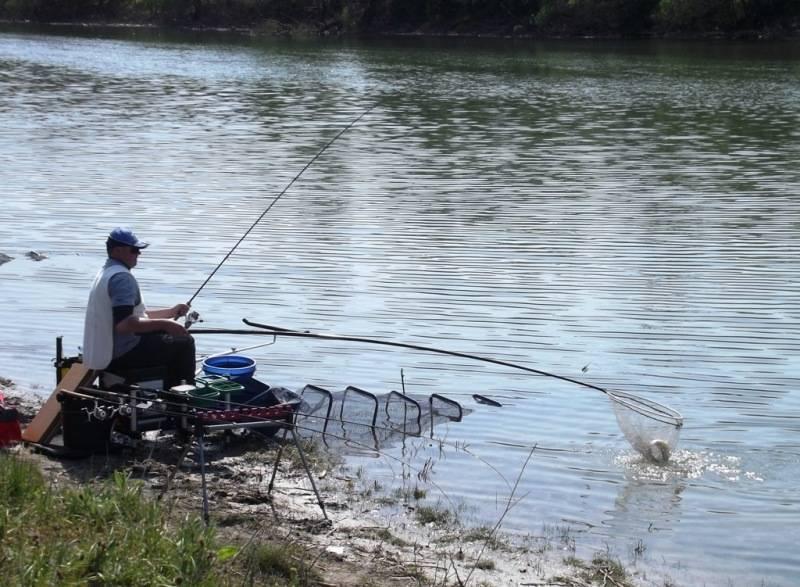 Рыбалка в ростове-на-дону: лучшие рыболовные базы в ростовской области, как ловить весной