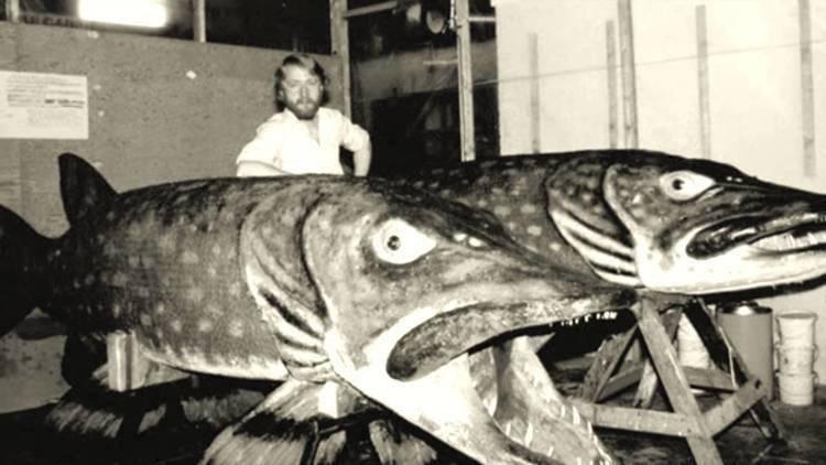 Самая большая пойманная щука в мире и в россии (в книге рекордов)