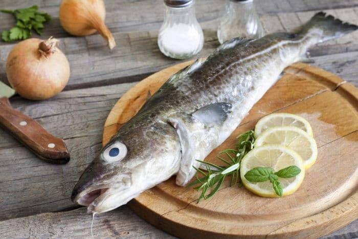 Рыба пикша польза и вред