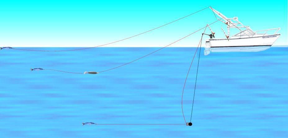 Тролинговая рыбалка: техника ловли судака троллингом, выбор удилища и монтаж снасти, особенности выбора места и времени для рыбалки