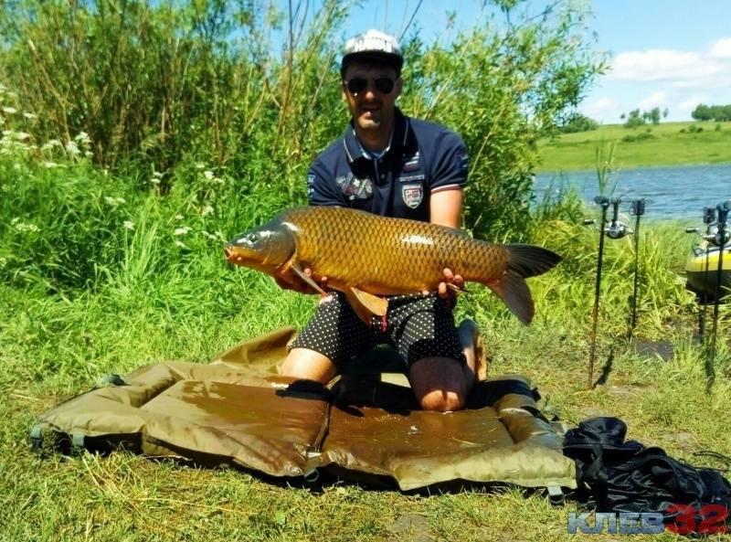 15 лучших рыболовных мест на кубани. бесплатные и платные | животный мир