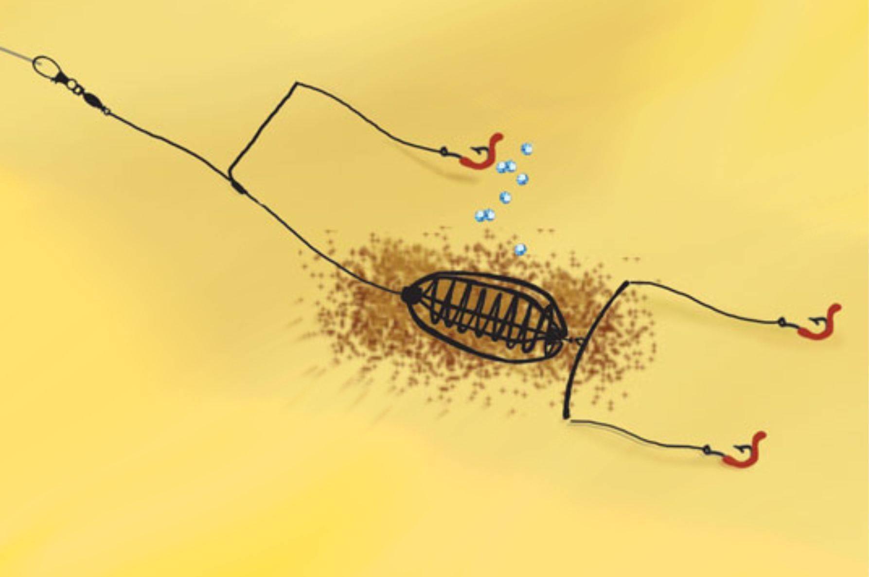 Фидерная ловля для начинающих - как ловить, правильная оснастка и техника заброса
