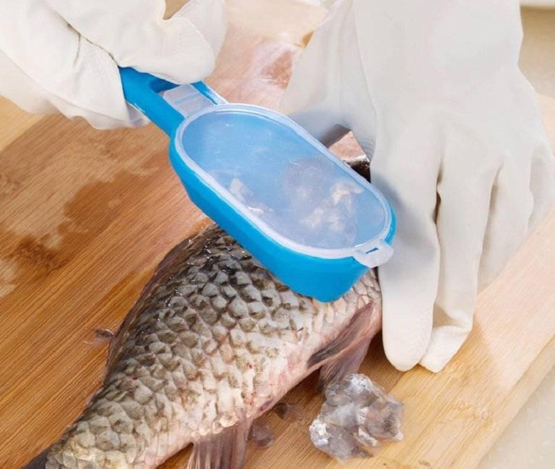 Как чистить рыбу? - serviceyard-уют вашего дома в ваших руках.