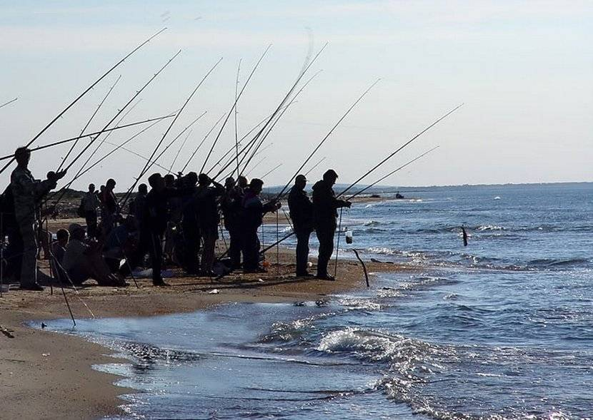 Витязевский лиман: идеальная рыбалка около анапы