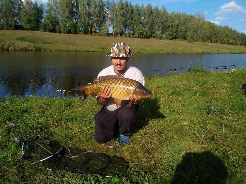 Рыбалка в тульской области: где лучше рыбалка в туле - в алексине, на оке или в других местах? где клюет карась, а где ловить раков, щуку и осетра?