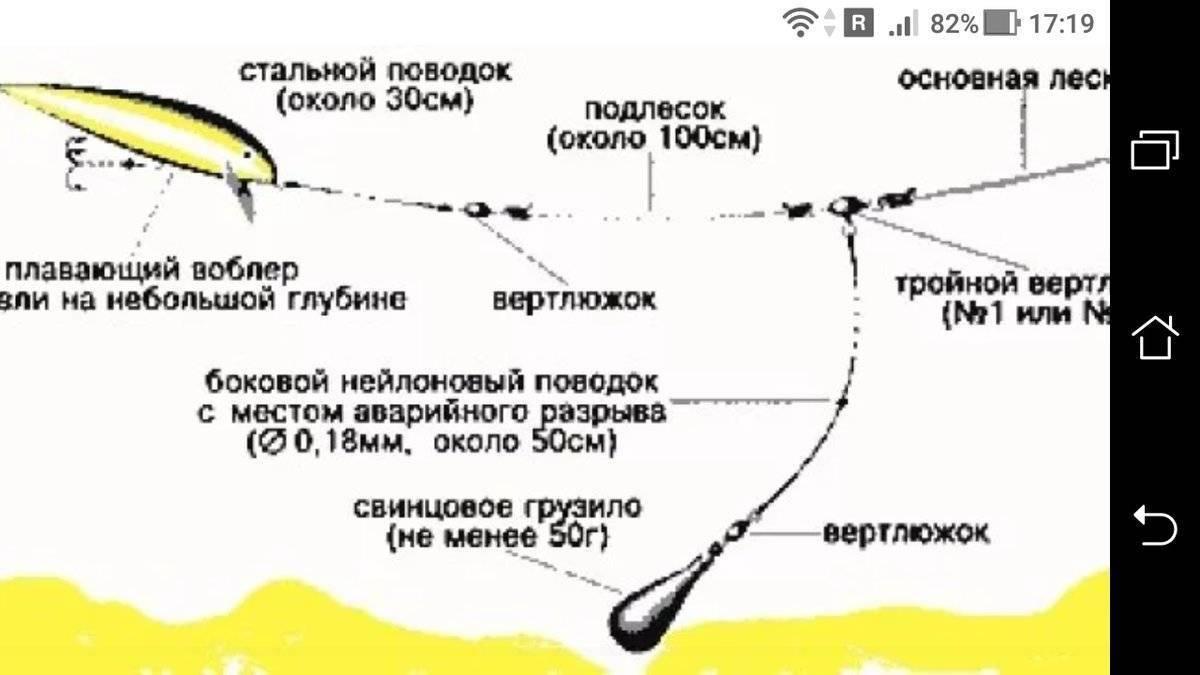 Ловля судака на спиннинг: ( как правильно ловить судака на спиннинг)
