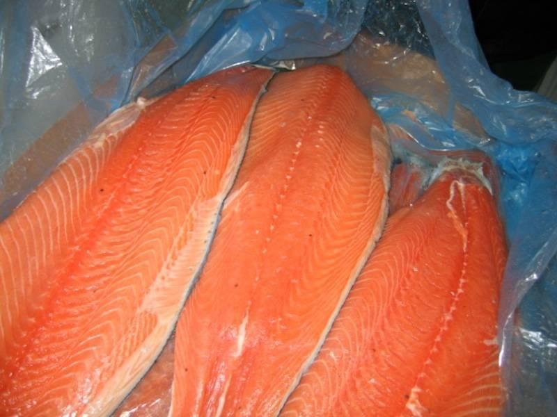Чем отличается лосось от семги внешним видом и вкусовыми характеристиками