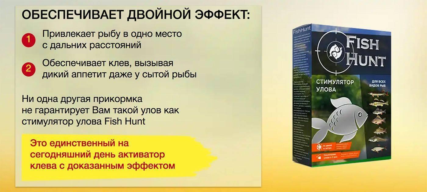 Fish hunt: отзывы об активаторе клева, развод или нет, состав приманки-стимулятора