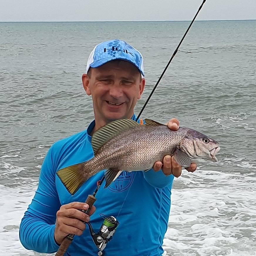 Рыба «Горбыль судачий серебристый» фото и описание