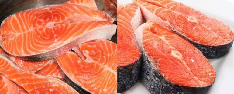 Чем отличаются форель, семга, лосось? что лучше форель или семга?