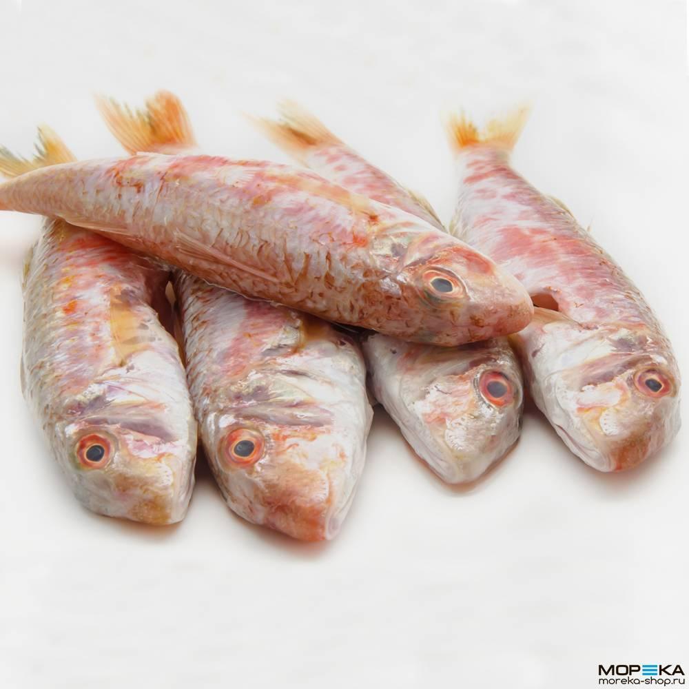 Черноморская барабулька – народный деликатес