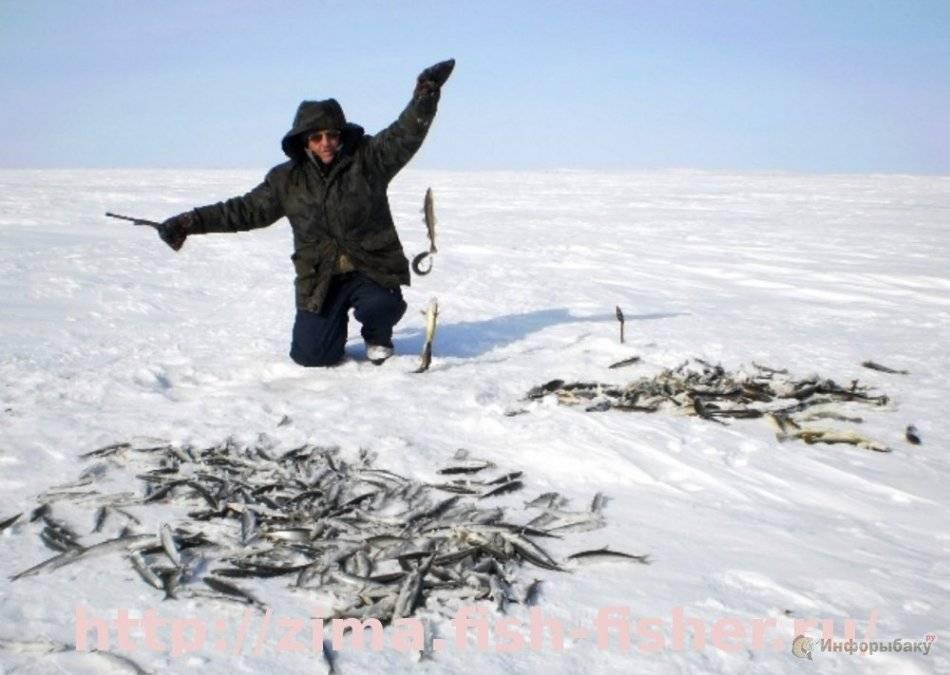 Зимняя рыбалка: краткое руководство с советами бывалых рыбаков