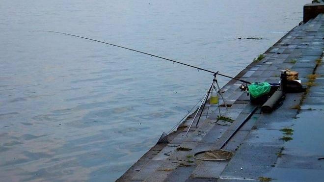 Фидер для начинающих — монтаж снасти и техника ловли