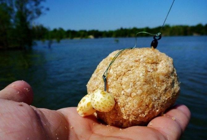 На что, где и как ловить белого амура? – суперулов – интернет-портал о рыбалке