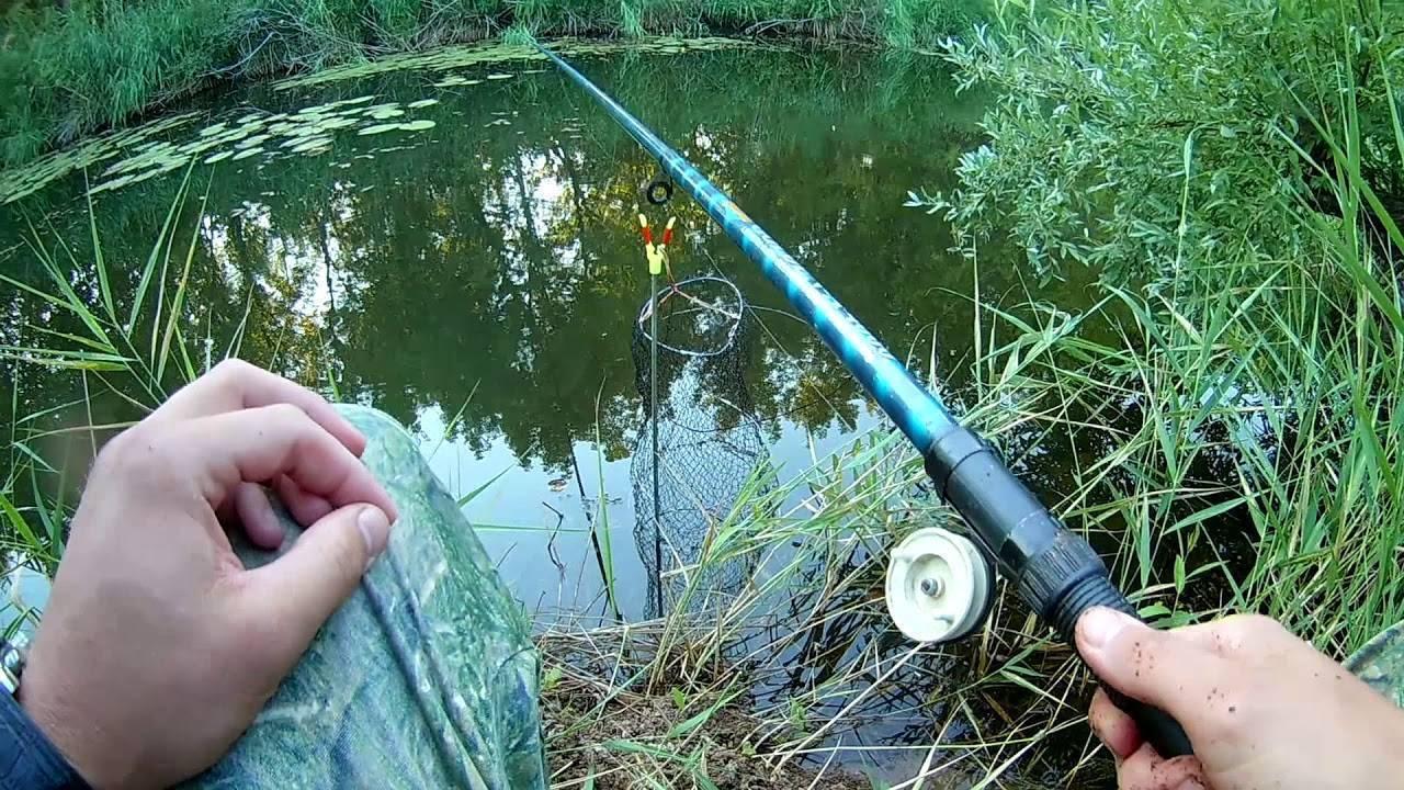 Ловля плотвы весной на фидер, секреты рыбалки на озере в апреле