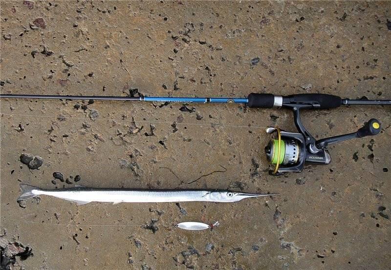 Снасть бомбарда для рыбалки: правильный монтаж и техника ловли