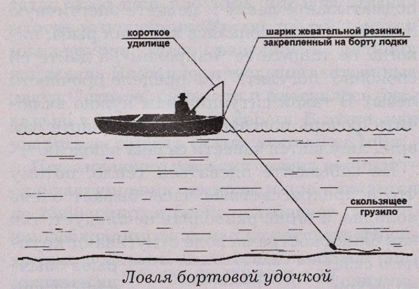 Ловля крупного леща на поплавок