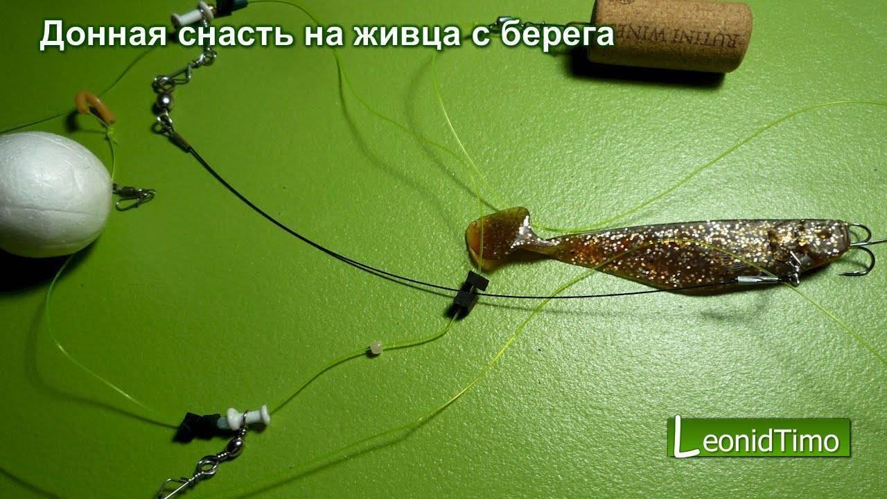 Все тонкости процесса ловли судака на живца: оснастка для рыбалки с берега