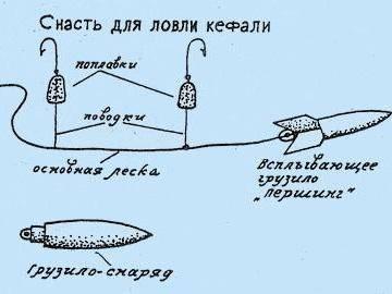 Ловим кефаль с берега в крыму на черном море